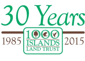 30th Anniversary Logo