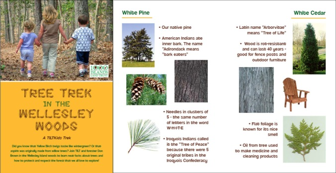 "2012 ""Tree Trek in the Wellesley Woods"" KidsTrek Booklet"