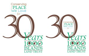 30AnnivLogo_Option4