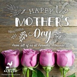 mothersday2_fb
