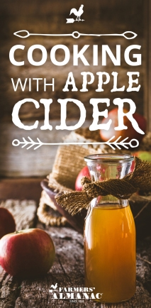 Cooking_AppleCider_Recipes_Pin