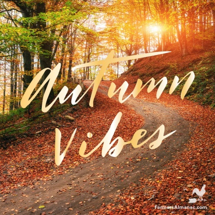 AutumnVibes-FB