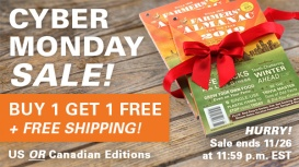 CyberMonday-2for1-Featured-NewsAd