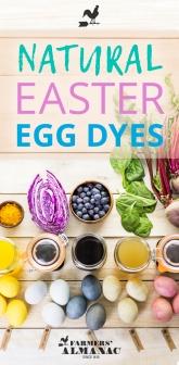 Natural-Easter-Egg-Dye-Pin