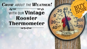 Rooster_Thermometer_fxbx-2