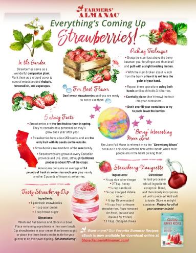 Strawberry-EmailOptIn-NEW
